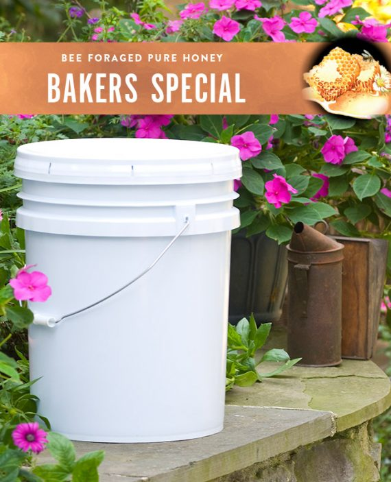Bakers Special Honey Pail