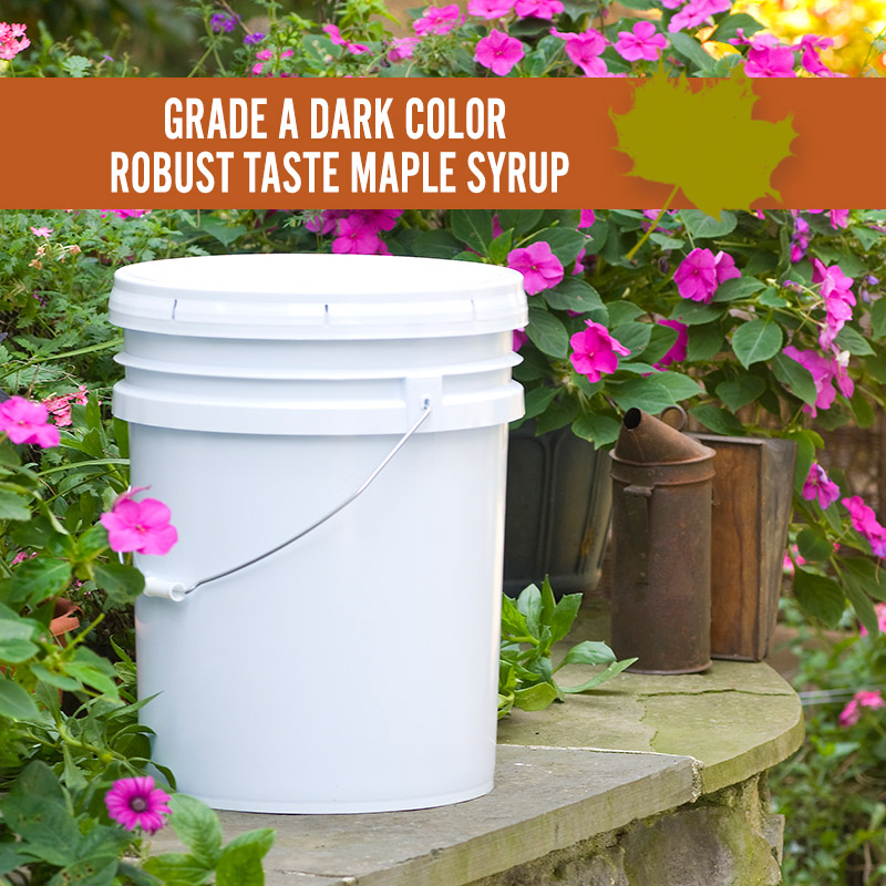 Dark Color Robust Taste Maple Syrup Pail