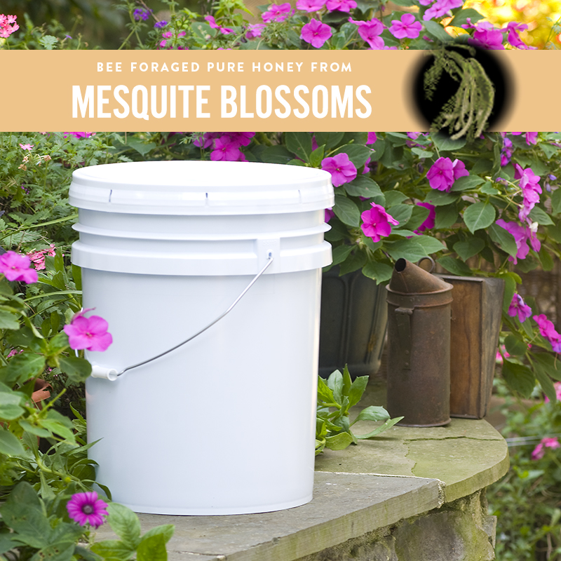 Mesquite Honey Pail