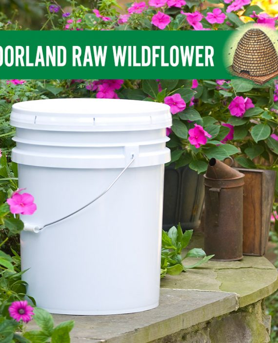 Moorland Raw Wildflower Honey Pail