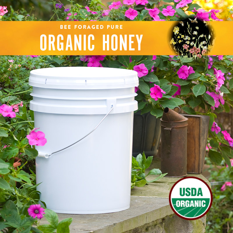 Organic Honey Pail