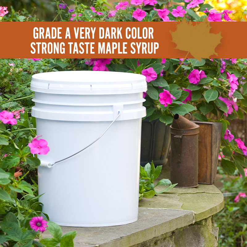 Very Dark Color Strong Taste Maple Syrup Pail