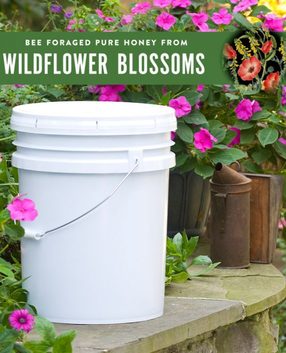 Wildflower Honey Pail